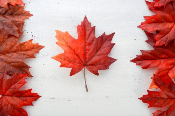 IoT普及率5%の日本、今年中に普及率100%を狙うカナダから何を見る?